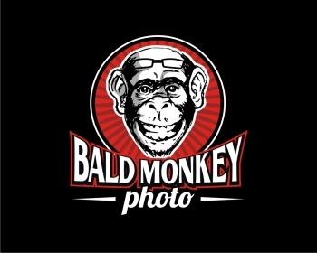 Bald Monkey Photo