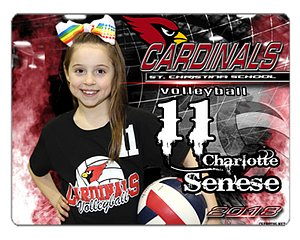 Volleyball Mouse Pad