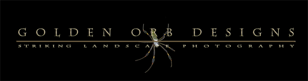 Golden Orb Designs