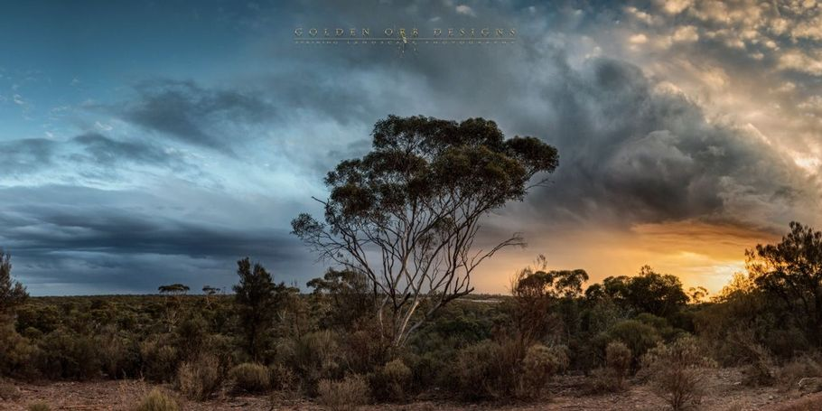 Goldfields Sunset Pano 12