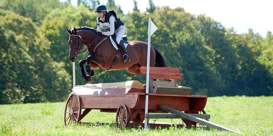 Equestrian Show Coverage