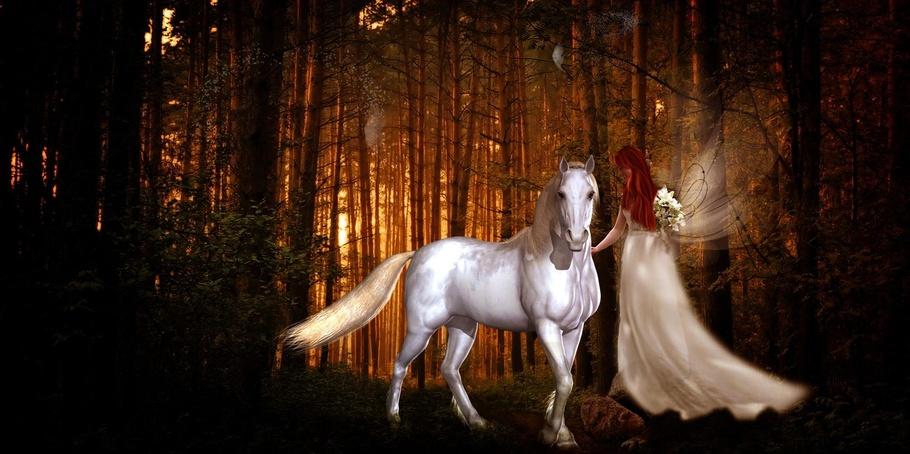 Fairy Bride