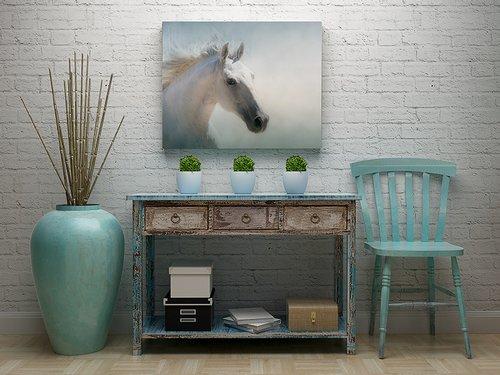 Acrylic Mount Framed