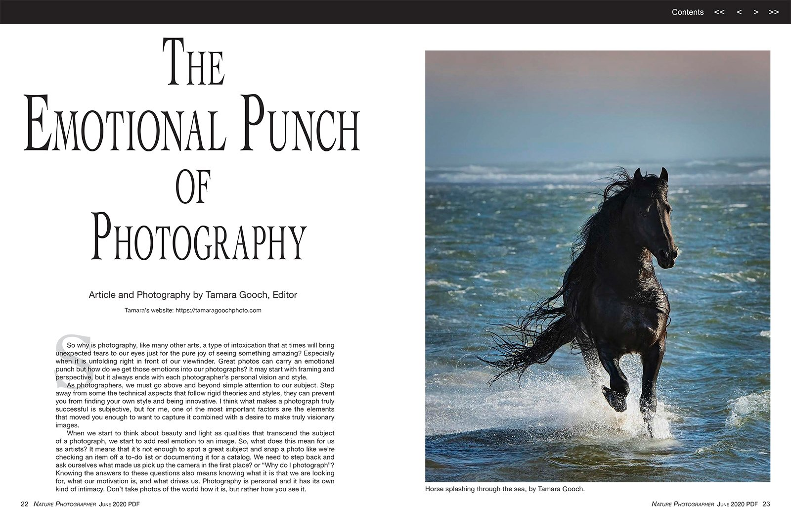 Tamara Gooch Photography Nature Photographers Magazine
