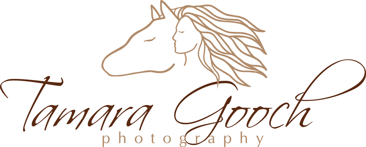 Tamara Gooch Photography