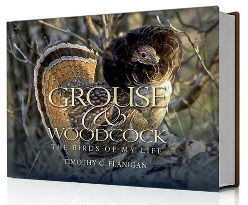 Grouse & Woodcock - The Birds Of My Life by Timothy C. Flanigan