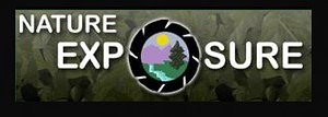Nature Exposure Logo