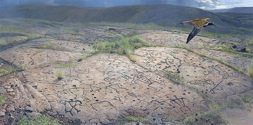 Petroglyph field in Hawaii Volcanoes National Park