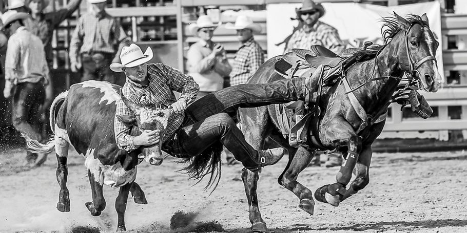 Mens Steer Wrestling Mareeba Rodeo 2018
