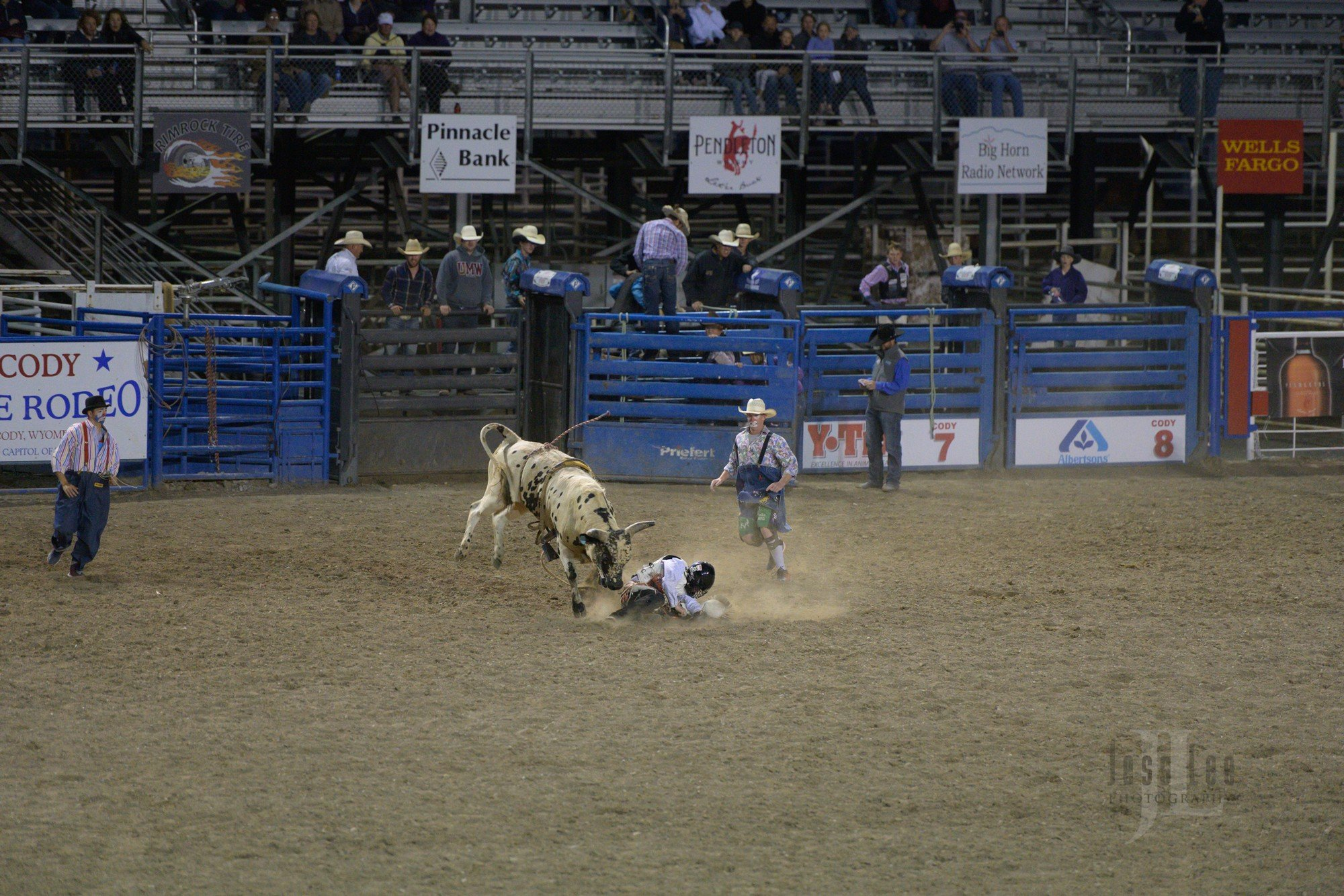 Z7 iso 5000 Cody night rodeo
