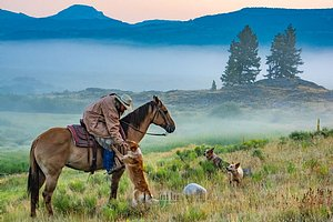 Cowgirl in Wyoming and dog