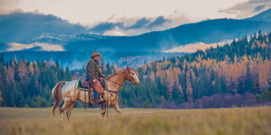 Idaho Cowboy during Autumn