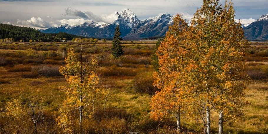 Autumn Grand Teton Photo Workshop