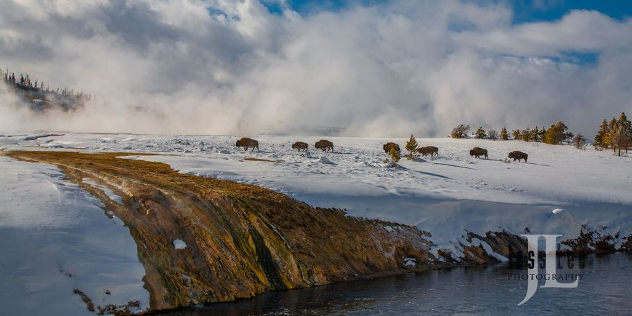 Yellowstone in Thermal hot springs