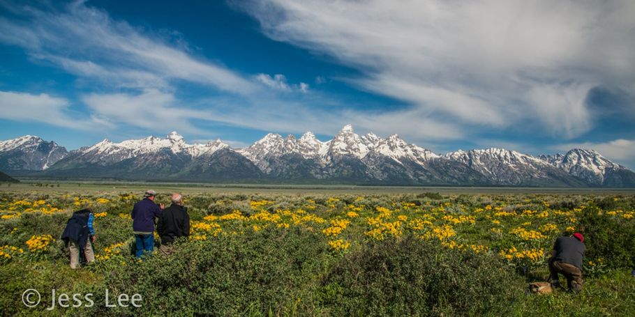 Teton Photographers