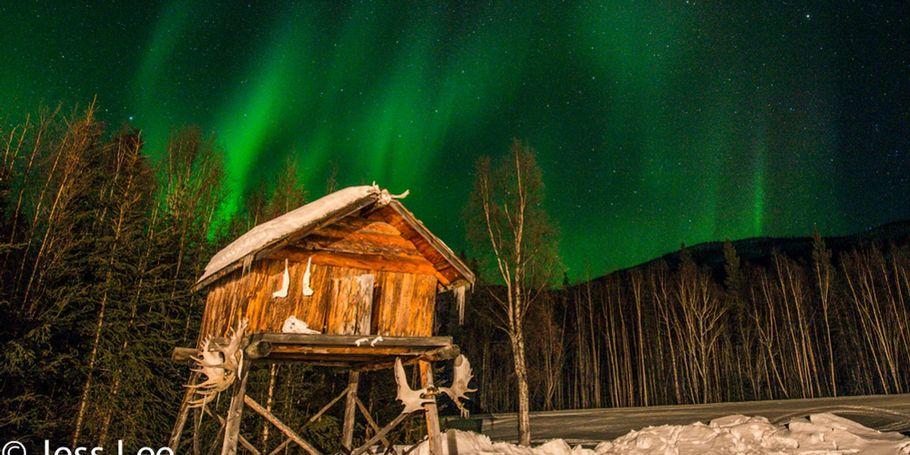 Alaska trappers cache