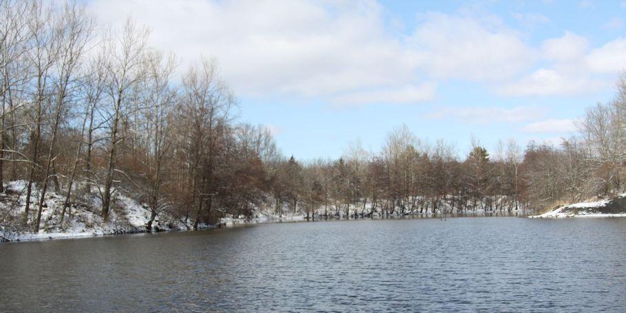 Finger Lakes State Park 2020