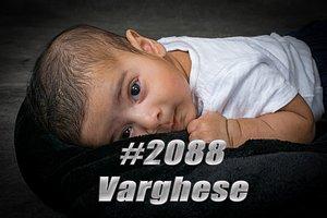 2088 Varghese