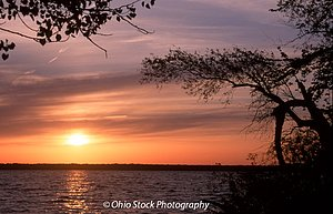 Sunset with tree branches over the water at Pymatuning State Park photo by Ohio Stock Photography 7A514