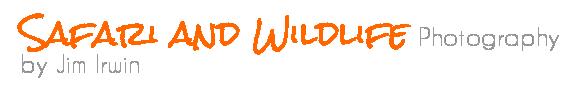 Jim Irwin Wildlife Photography, LLC