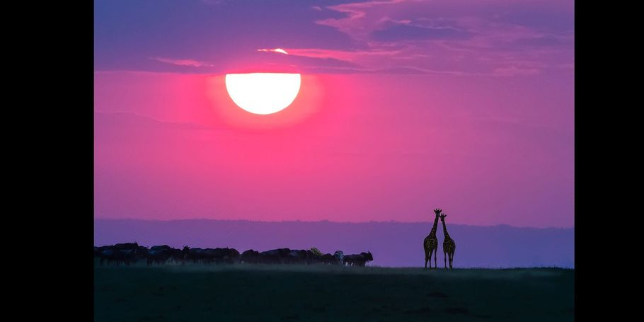 Sundown On The Masai Mara